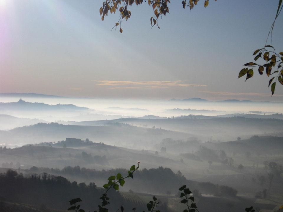 Foschia nelle colline del Monferrato